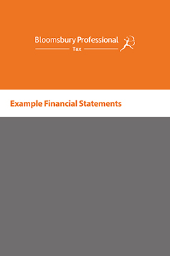 Example Financial Statements