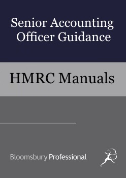 Senior Accounting Officer Guidance